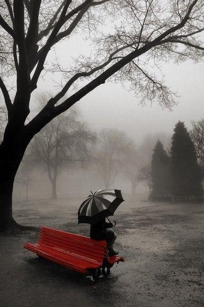 На скамью в парке на черно белом фото